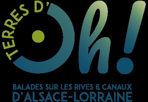 Logo terres doh